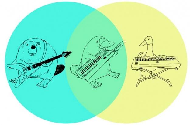 venn platypus keytar